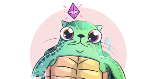 The Honu Kitty: Supporting Ocean Conservation the Crypto Way